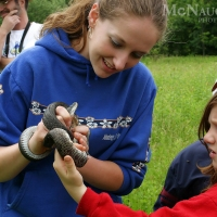 Nature Program on Snakes